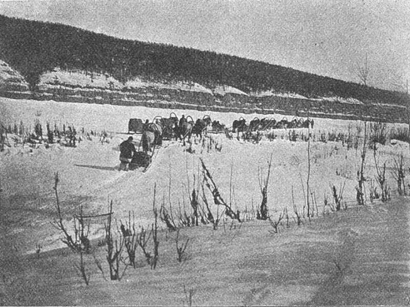 Берег реки Маи 1903 год