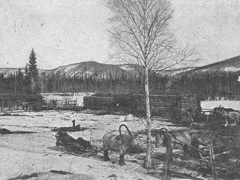 Жилище оседлых тунгусов на реке Мая 1903 год