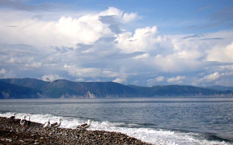 Охотское побережье вблизи Аяна