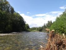 Река-Таймень