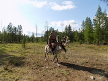 Верховая езда на олене