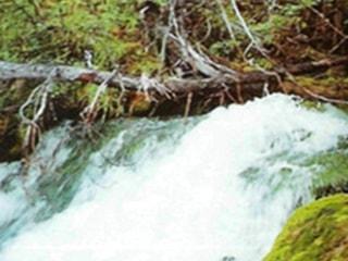 Карстовые реки