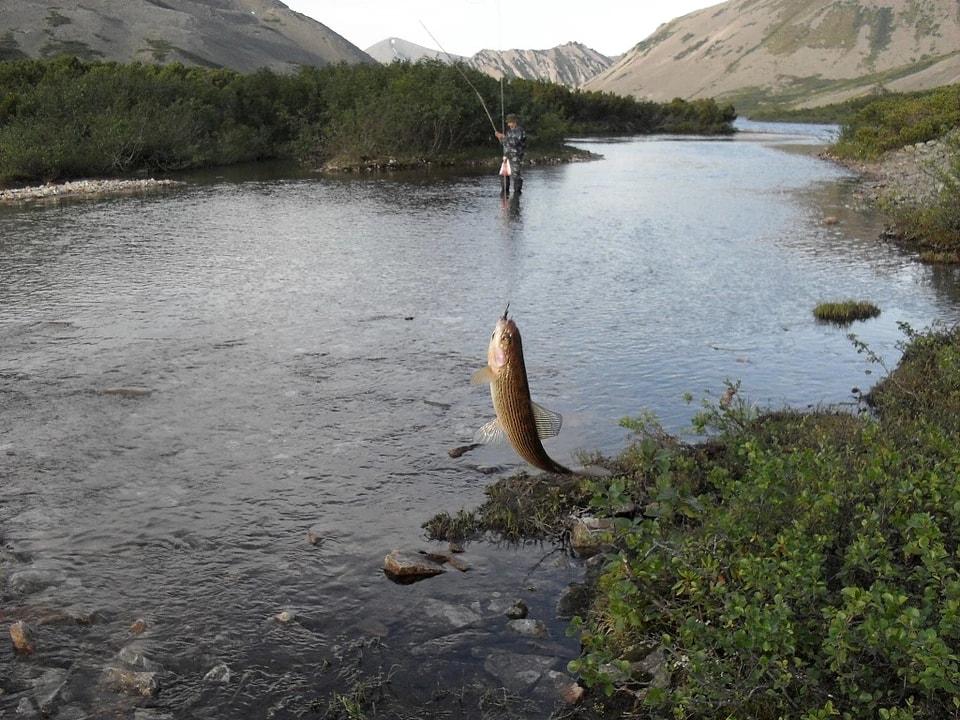 Рыбалка на озере Байкаленок (фото Карамзина А.Н.)