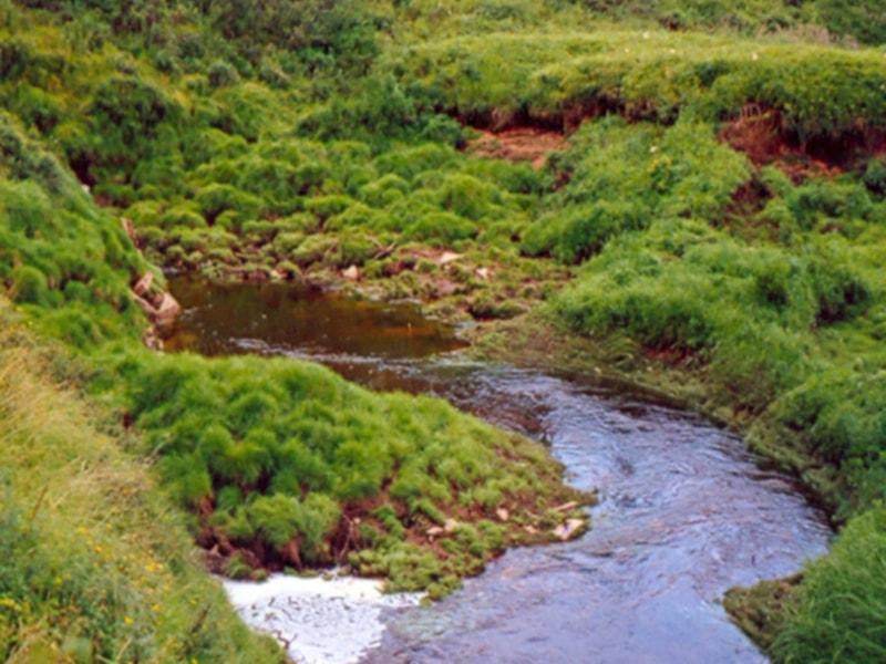 Карстовая река Ардьах