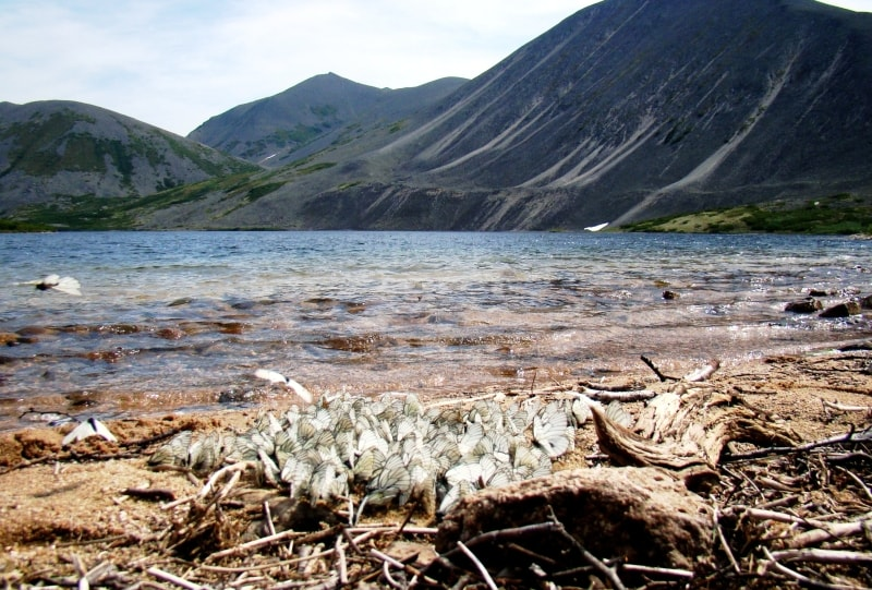 Озеро Байкаленок (фото А.Карамзина)