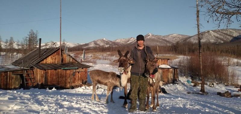 Новый кочевник и его девять оленей